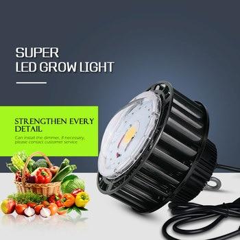 CREE CXB3590/XPE1/XPE2 с регулируемой яркостью COB Led Grow Light 300 Вт полный спектр Grow Light для комнатных теплиц Grow Box медицинские растения