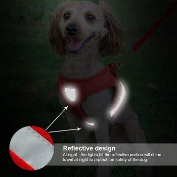 Cat Reflective Harness  3