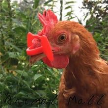 50 шт., распродажа, горячие пирожные, очки для курицы, очки, не клеют, очки для курицы, необходимые в розницу и оптом, вес 0,05 г