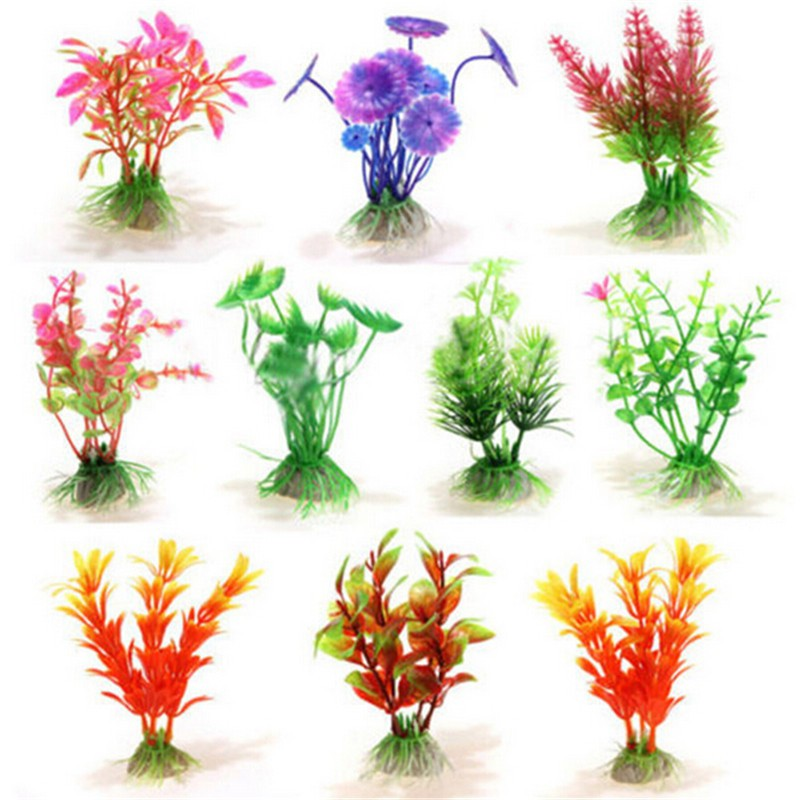 Top 10 Small Fish Tank Plants Ideas And Get Free Shipping Jebdk46d