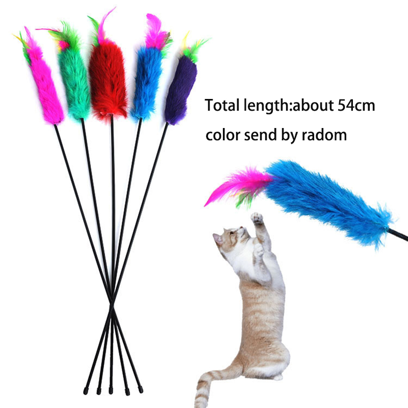 Apaulapet 10pcs Feather Pet Cat Toy Cute Design Wire Feather Teaser Wand Plastic Toy Cat Play Feather Teaser Flower Toy For Cat