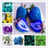 Big-Promotion-300-seeds-bag-organic-sweet-strawberry-Fruit-Seeds-5-colors-purple-green-blue-yellow.jpg_200x200
