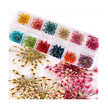 Real Nail Dried Flowers Nail Art Decoration DIY Tips with Case Small Flowers Nails Tools Rhinestones Decorations 12 Colors