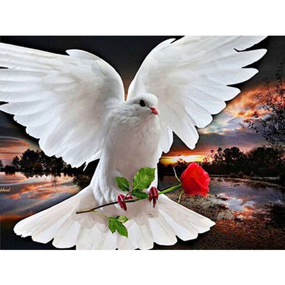 Прикольные картинку, открытки с днем голубевода