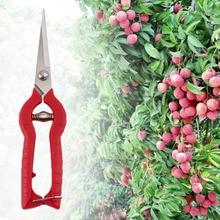 Plant Pruning Scissors Garden Cutter Flower Shears Hand Pruner Tool DIY Worldwide store