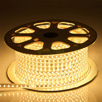 100M SMD5050 Waterproof 60 Leds M AC220V IP67 LED Flexible Strip Lights Plug Adapter RGB Cool