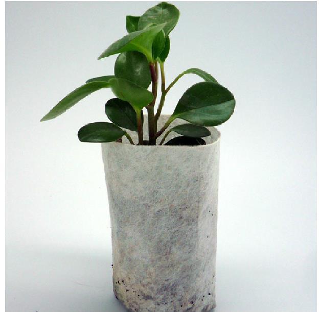 wholesale 5000 pcs plant fiber Nursery Pots Seedling raising bags ...