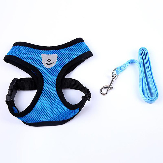 Cute Small Nylon Pet Harness set.