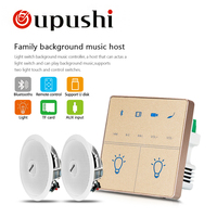 home audio mini amplifier bluetooth 10w ceiling speaker mount family background music sound system