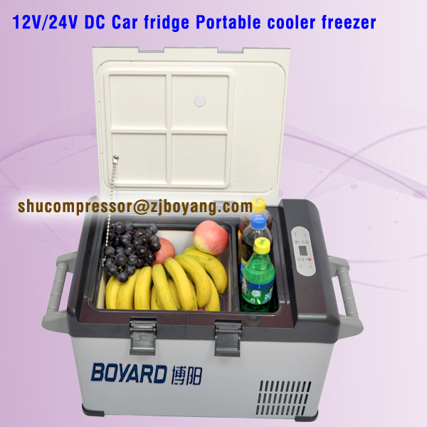Made in china hot selling DC 12V 24V Solar Fridge Freezer with compressor