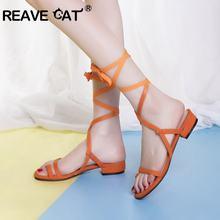 8dced499013772 REAVE CAT sangle romaine gladiateur sandales pour femme été chaussures  plates croix attaché troupeau casual sandales de plage gr.