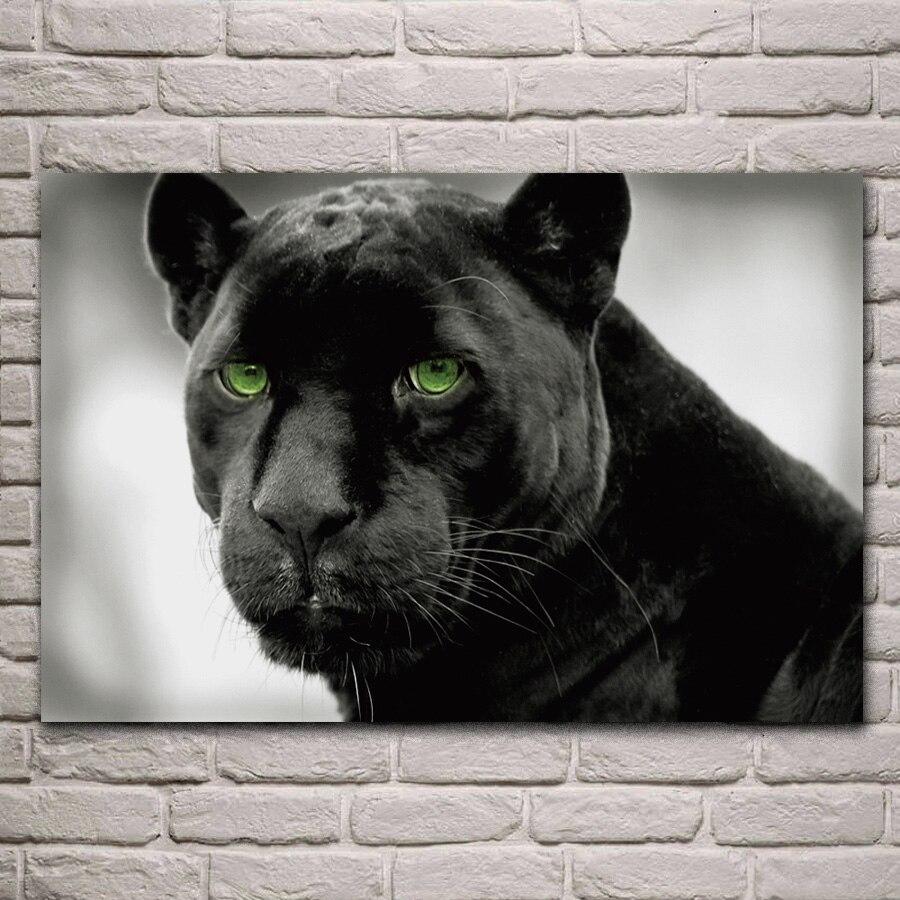 Пантера с зелеными глазами картинка