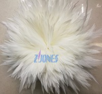1 Single Pack Rooster Saddle Hackle Feather Strung(900pcs) 15 20cm 6 8 White Chicken feather Trimming Cock Ribbons For Dress