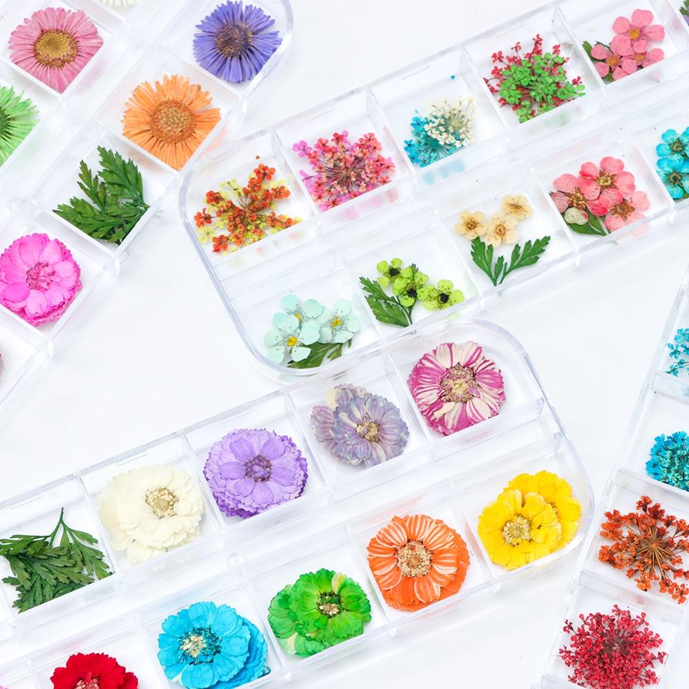Сухоцветы лист ногтей украшения натуральный наклейка в виде цветка 3D сухой для маникюра ногтей наклейки ювелирные изделия УФ Гель-лак Маникюр TRFL-1