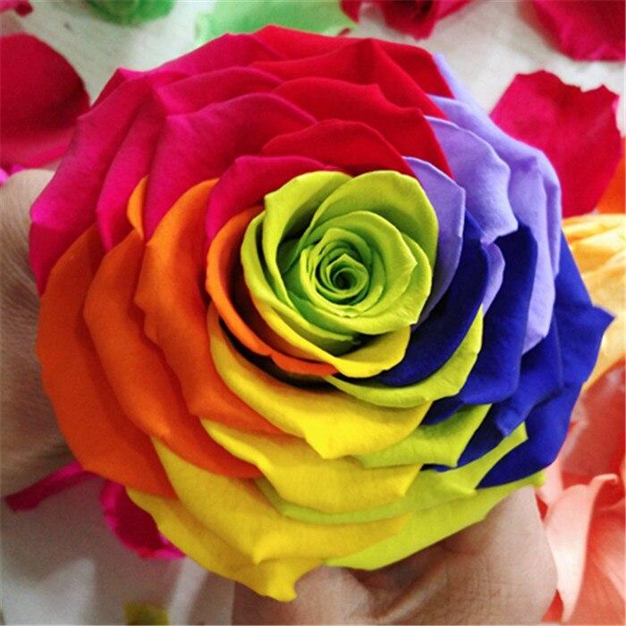 Valentinstag diy geschenke DIY dekoration Ewige Leben Erhaltung ...