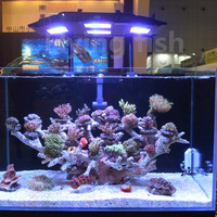 CYREX A1 aquarium light 152W Full spectrum plants or seawater coral LED lights simulate sunrise and sunset with phone APP