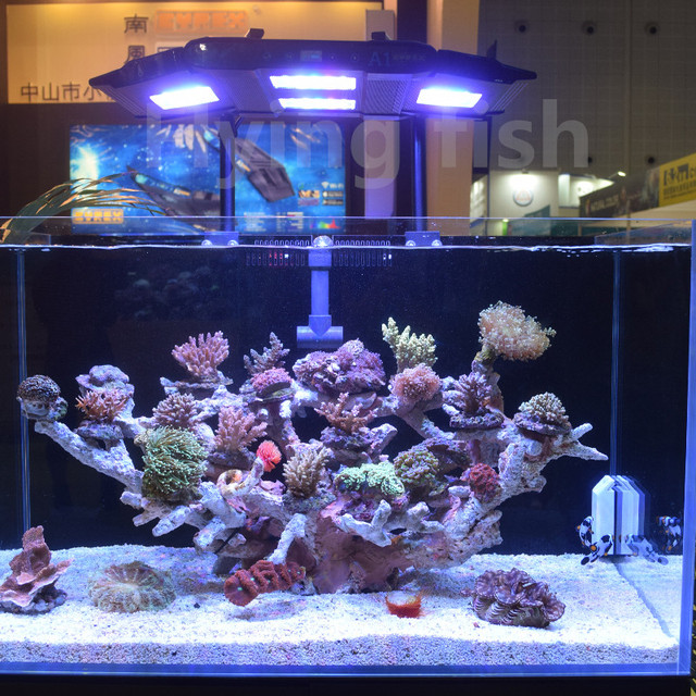 cyrex a1 aquarium light 152w full spectrum plants or seawater coral