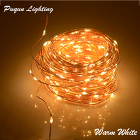 New Arrival DC 24V 30M 98 4ft 300 Leds Copper Wire LED String Light Starry Lights