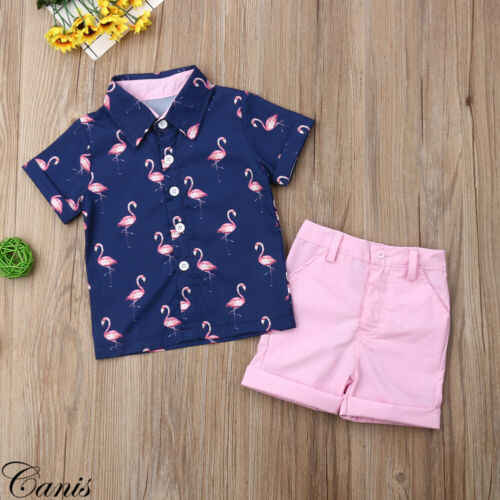 2019 Fashion Kids Baby Jongens Flamingo T-shirt Tops Broek Outfits Set Casual Kleding
