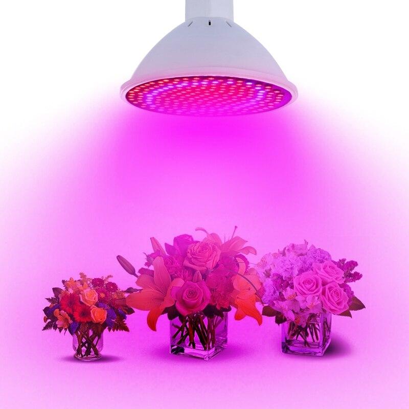 Levou Crescer Luzes 20 w levou crescer luzes Características : Led Plants Grow Light Bulb