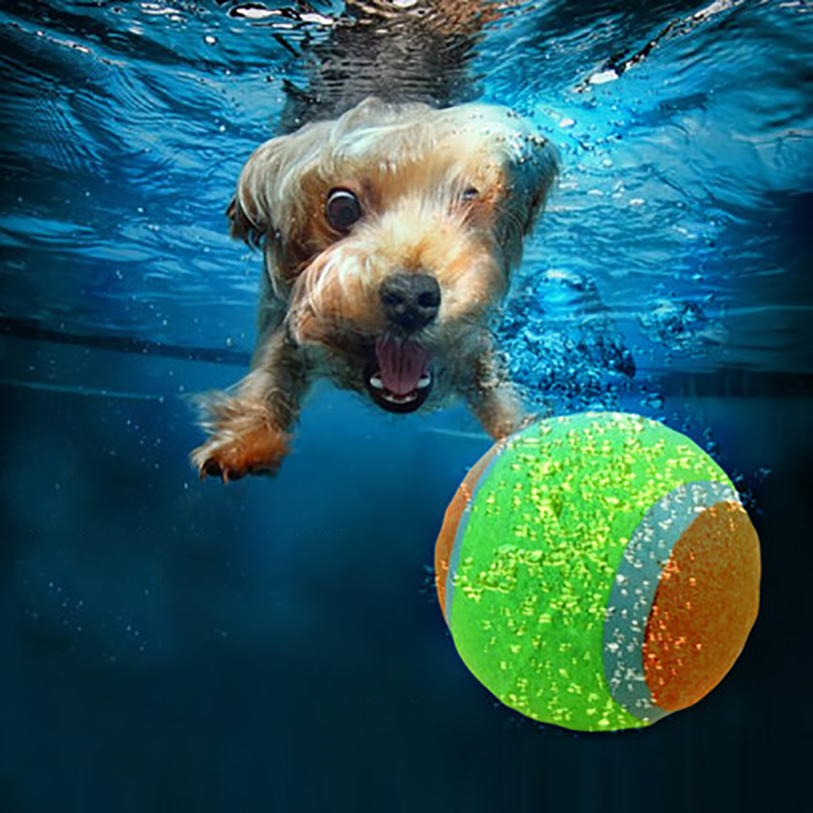 Lavable Para Mascotas Productos Para Perro Pequeño Juguete Cachorro Chew Sound B