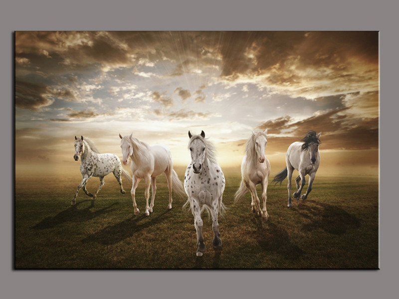 1 Piece Picture Running White Horse Modern Home Wall Decor Painting
