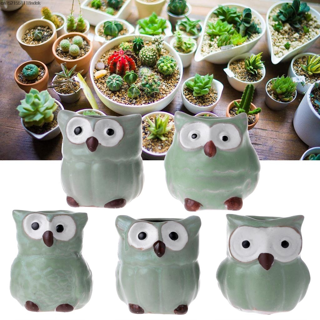 Cute Owl Decor Aliexpress Buy 5pcs Cute Owl Ceramic Succulent Planter Miniature Flower Plant Pots Office Decor From Reliable Flower Pots Planters Suppliers