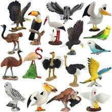 Wiben Aves pelikan łysy orzeł śnieżna sowa wspólne strusie papuga model zwierzęcia Action figurki do zabawy nauka edukacja ptaki prezenty