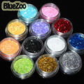 BlueZoo 12 Pots/pack Different Color Glitter Nail Art  Powder Dust Decoration Colored Acrylic Nail Powder With Box