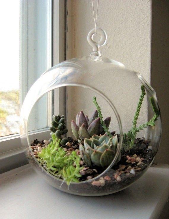 3PCS/Set DIY Hanging Planter Vase With Air Plant Kits,Glass Globe Succulent  Terrariums,Garden Bonsai/Garden Decor-in Bonsai from Home & Garden on ...