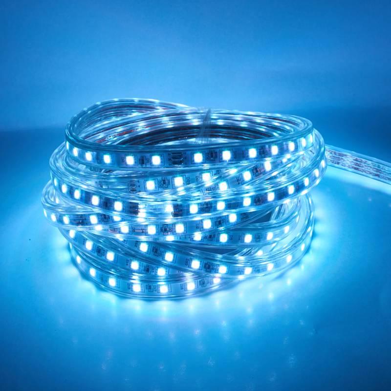 Waterproof 5050 Tape Light: SMD 5050 AC220V LED Light Strip Flexible Lamp 60leds / M