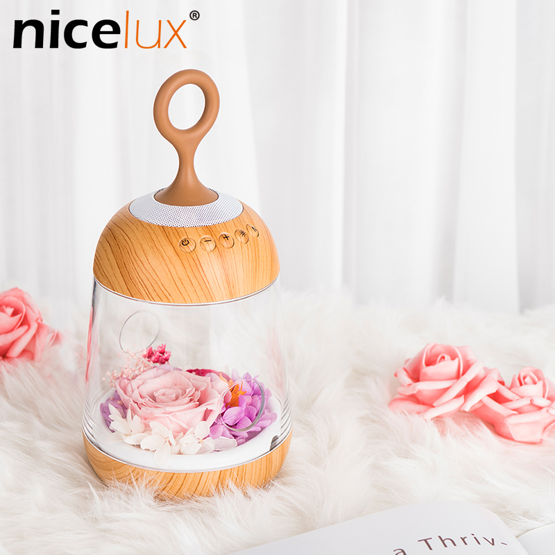 Flower LED Night Lamp Rechargeable Streamer Bottle Creative Rose Gift for Girl Children Table Light with Bluetooth Speaker led night lamp decorate dream bluetooth voice speaker christmas ever fresh flower creative music box rechargable desk light gift