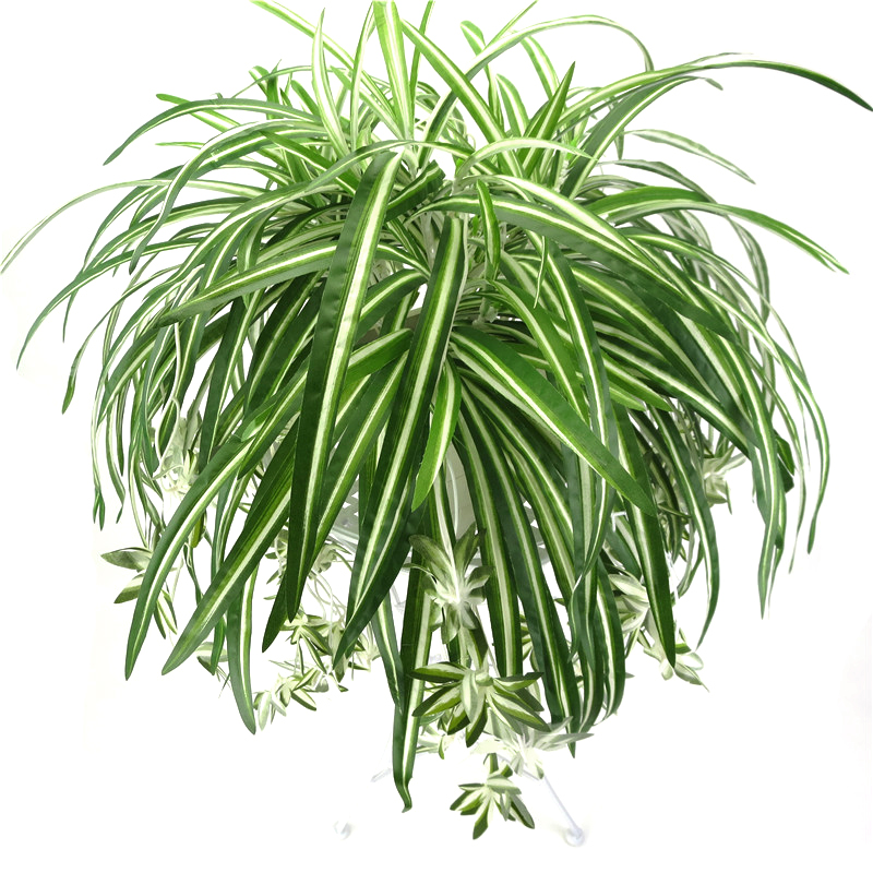 65cm 5 Heads Artificial Plants Wall Hanging Chlorophytum Green Plants PVC Fake Flower Simulation Leaves Home Garden Decor
