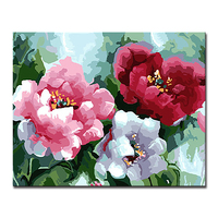 Framework DIY Painting By Numbers Kits Coloring Beautiful Flowers Bloom Oil Pictures Handpainted On Canvas Home