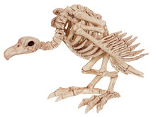 Horror Halloween Animal Skeleton 100% Plastic Bones