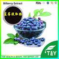 GMP Supplier Anthocyanidins Powder European Bilberry Extract, Chinese Bilberry Extract  500g/lot