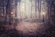 Luzes da árvore de floresta da floresta encantada Fantasia pano de Fundo de Vinil de Alta qualidade de impressão Computador crianças crianças foto cenário