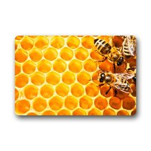with Honeycomb Nest Pattern Doormats Entrance