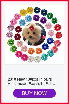 Cheap Acessórios para cães