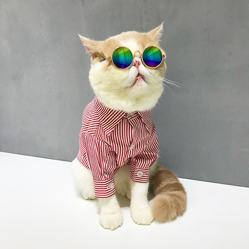 0cbe795b6a8 2019 Весна для женщин Элегантный повседневное блузка с цветочным принтом  кнопка дизайн рубашка с длинными рукавами