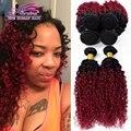 2 Пучки Волос Ombre Красный и Черный Человеческий Волос Вьющиеся Класс 7А Ombre 1b Бургундия Бразильский Джерри Curl
