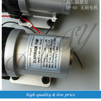 Brushless Motor DP 60 diaphragm pump 12v DC Pump