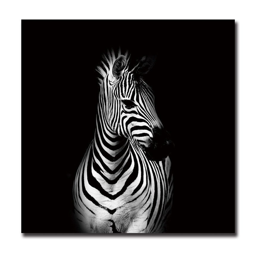black and white canvas art print poster zebra cuadros decoracion infantiles animal tableau. Black Bedroom Furniture Sets. Home Design Ideas
