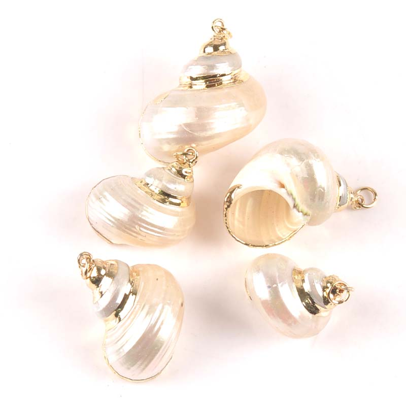 Natural Spiral Shell Gold Plated For Jewelry DIY Handmade Charms Pendant SeaShells Home Decoration 20-30mm 5pcs TRS0299