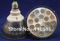 Wholesale CE RoHS E27 36W Par 38 LED PAR38 Bulb Lamp 85 256V With 18 LEDS
