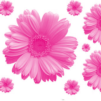Mixed Colour Pink Yellow Sun Flowers Tv Background Wall Stickers Window Decals Daisy 2sets Lot 45x60cm Piece In From Home Garden On