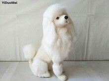 simulation poodle dog model prop,polyethylene&furs large 33x24cm white squatting dog handicraft,home decoration toy d2655 цена