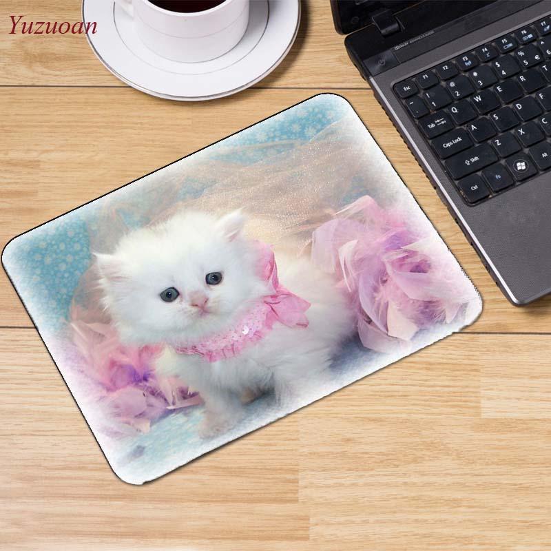 1Cats_Wood_planks_Kittens_Hat_521570_1280x854 (14)