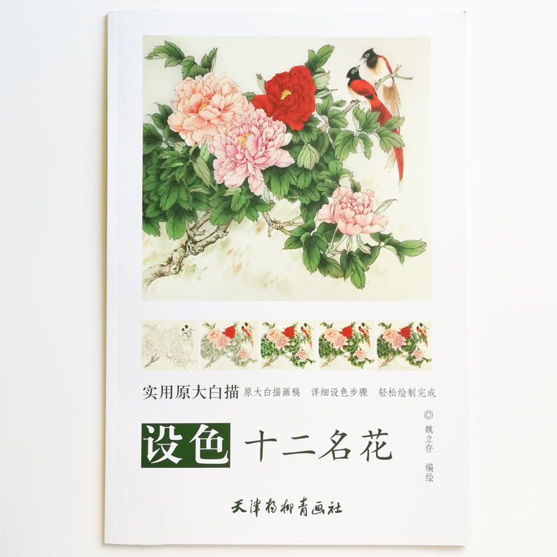 12 Traditional Famous Flowers Of China White Painting Adult Coloring Book 12Pcs Big Size Drawing Papers (48x41cm/19.2x16.1In)