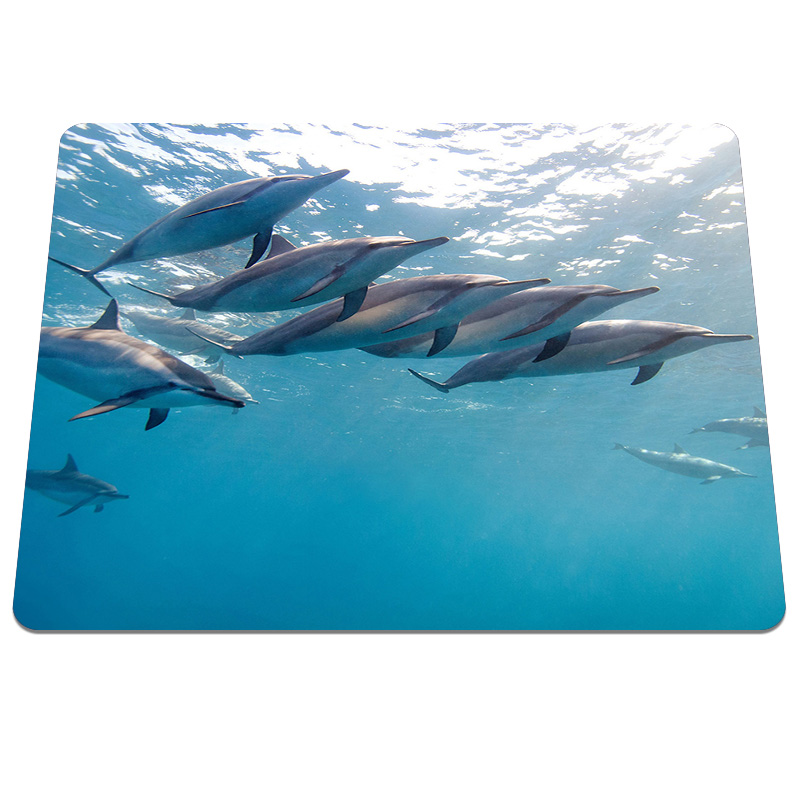 New High quality Animals close long nosed dolphin Pattern Durable Soft Silicone Optical Computer Mouse Mat Anti-slip Gaming Pads
